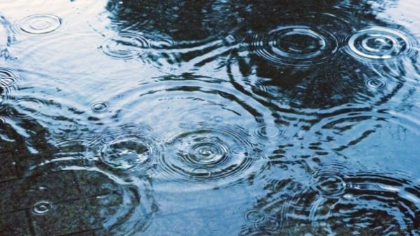 雨の日の水たまり